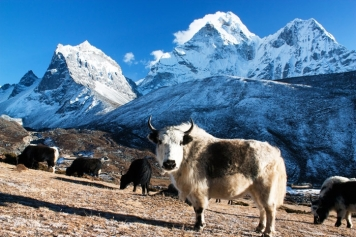 Sagarmatha National Park, in Nepal 1